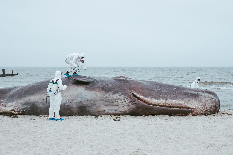 Horizonte Zingst - Fotofestival - Ostsee - Geschichten von unterwegs (84 von 102)