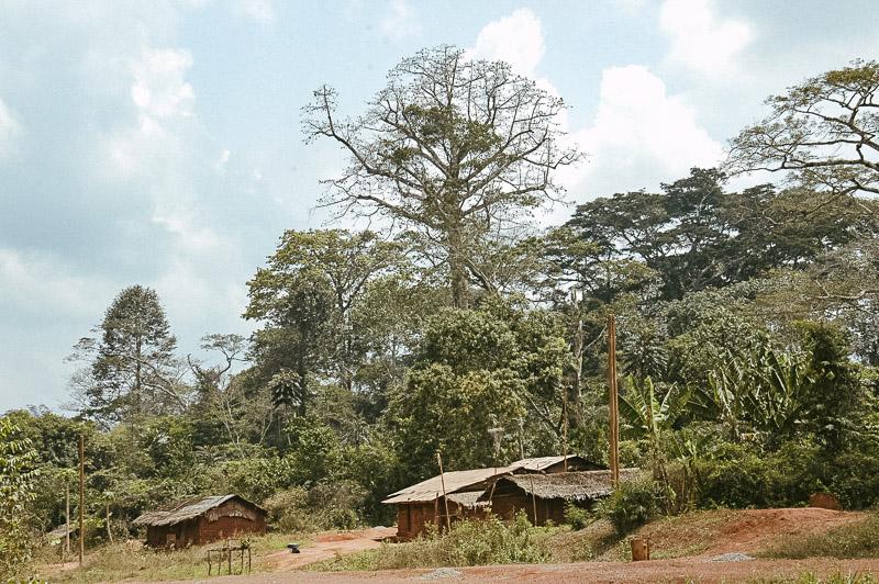 KAMERUN - Eine reise rund um Afrika - Geschichten von unterwegs-8256