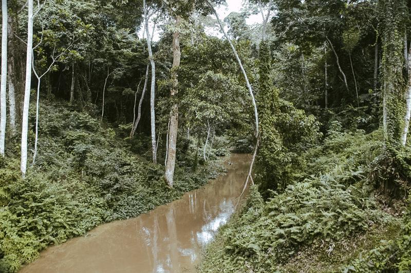 Gabun- Ein Reise rund um Afrika - Overland - Transafrika-10
