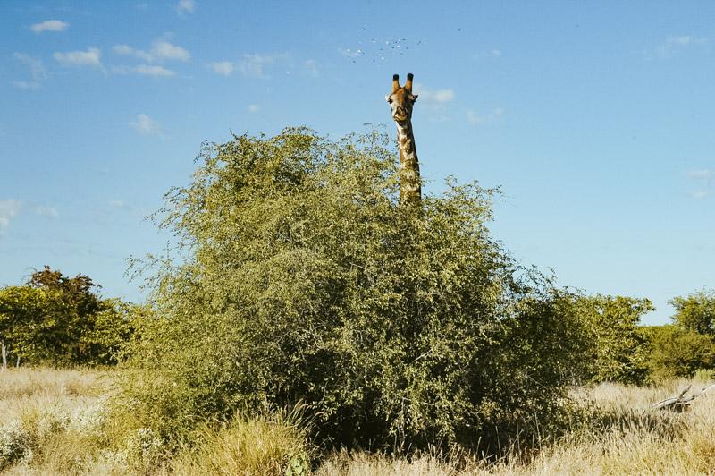 Namibia-Africa-Overland-43