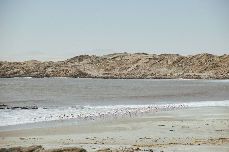 Namibia-Africa-Overland-61