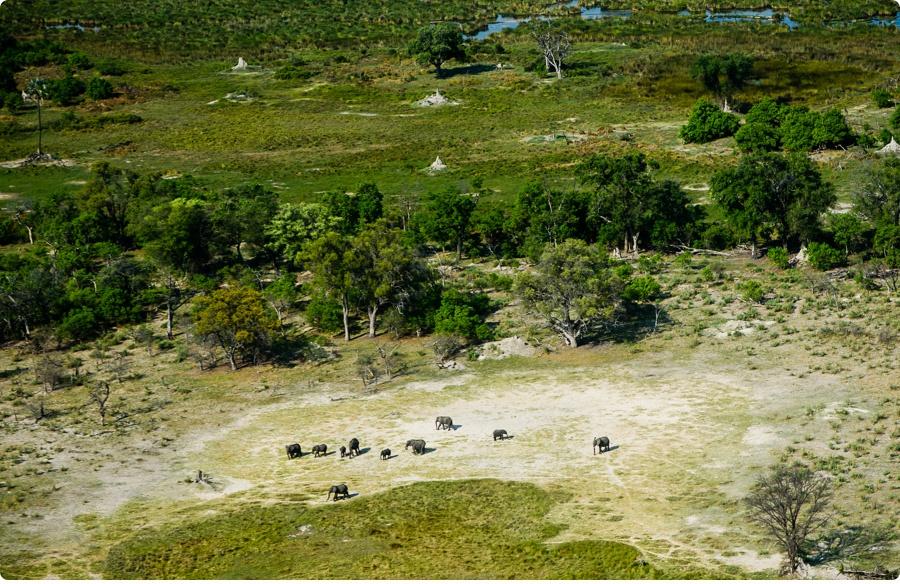 Afrika Teil1 - Von WIndhoek,Namibia nach Botswana ins Okavango Delta (29c von 9)