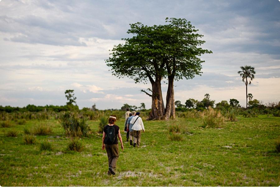 Afrika Teil1 - Von WIndhoek,Namibia nach Botswana ins Okavango Delta (72 von 118)
