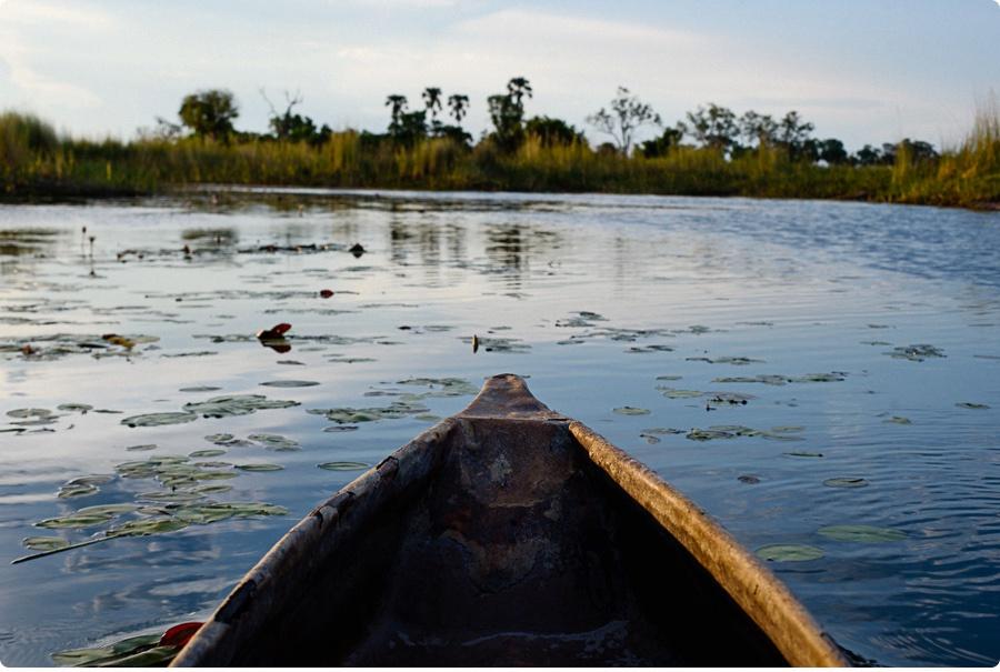Afrika Teil1 - Von WIndhoek,Namibia nach Botswana ins Okavango Delta (75 von 118)