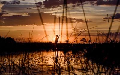 Quer durch Afrika I – Durch die Kalahari Wüste ins Okavango Delta