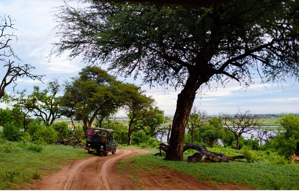 Chobe Nationalpark Botswana und Victoriafalls Zambia-18