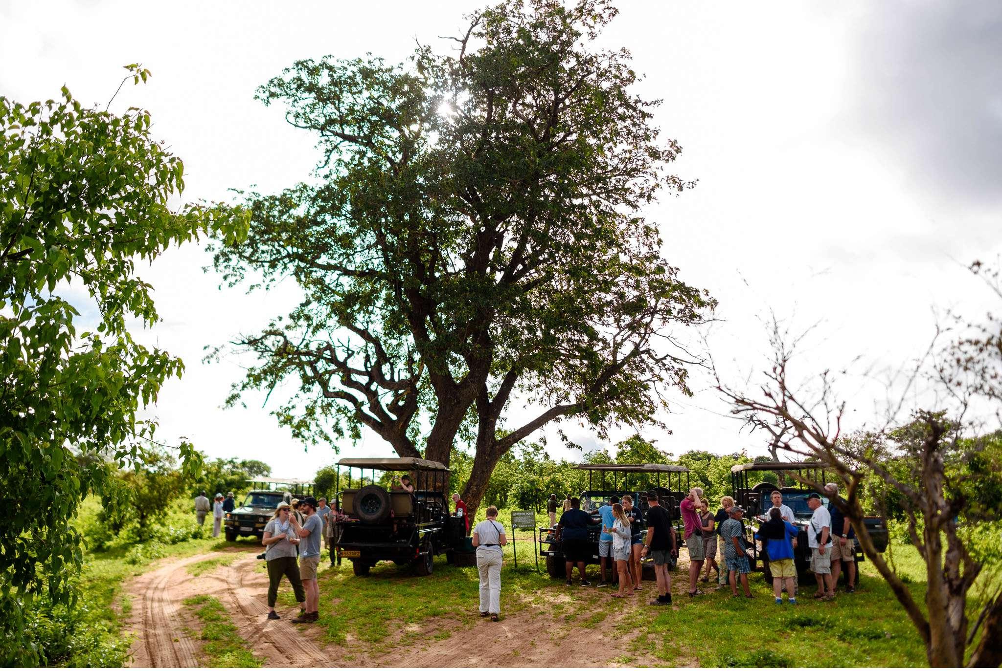 Chobe Nationalpark Botswana und Victoriafalls Zambia-48