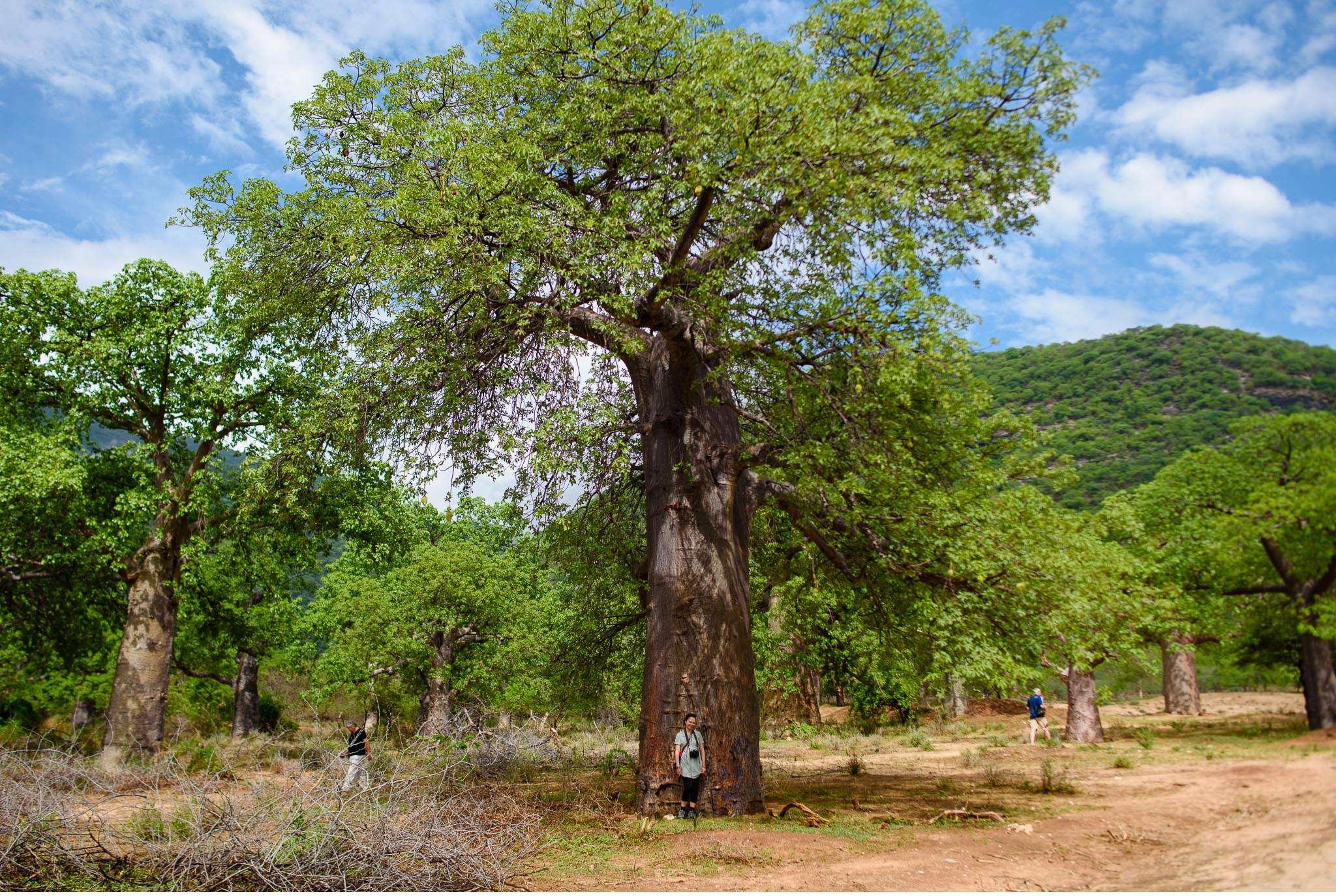 Malawi-Quer durch Afrika- Geschichten von unterwegs by Marion and Daniel-120