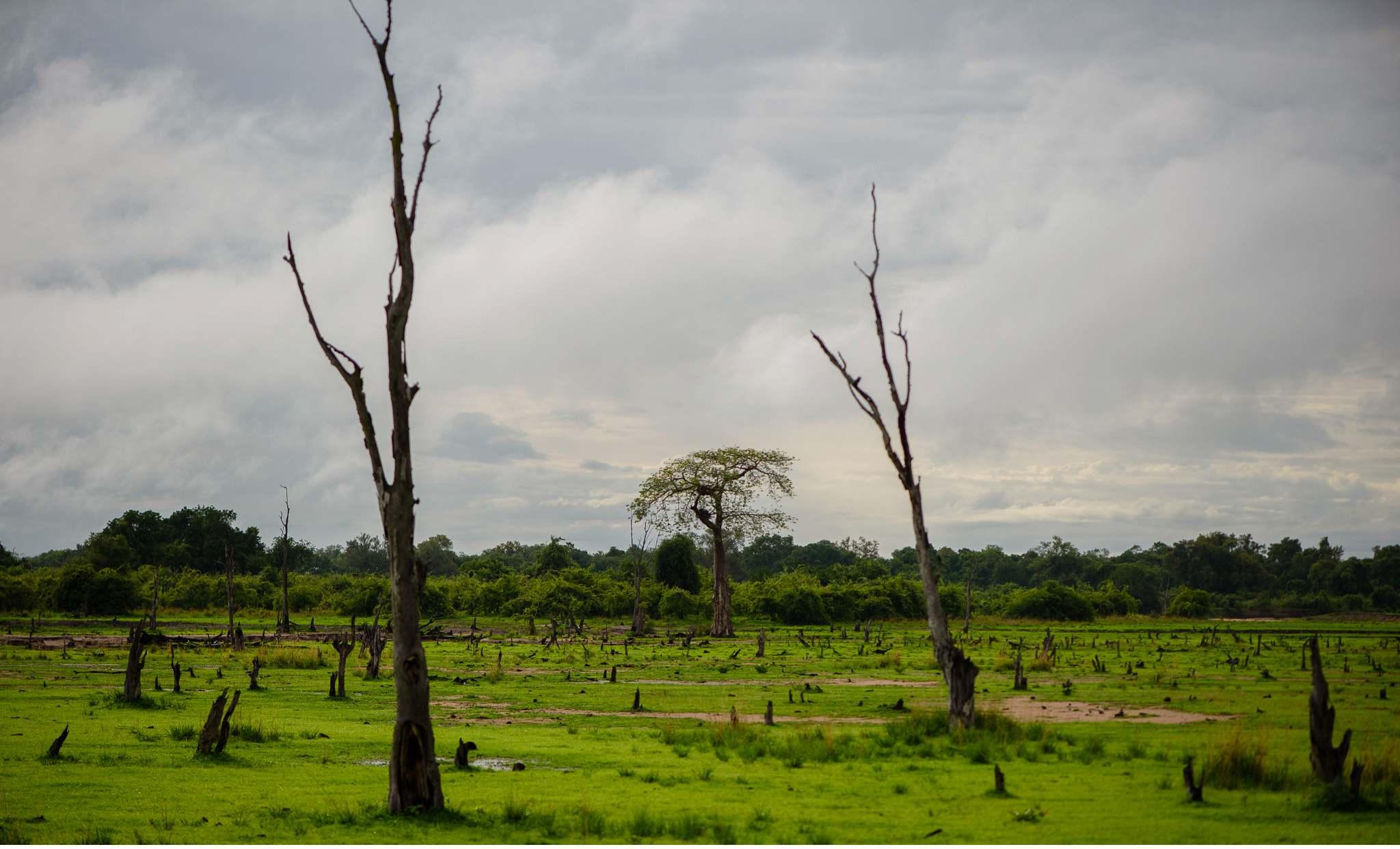 Vom South Luangwa in Zambia an den Malawi See - Marion und Daniel - Geschichten von unterwegs-52