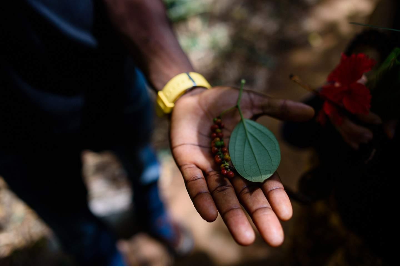 Zanzibar - Tropisches Paradies im indischen Ozean von Tanzania - Geschichten von unterwegs-119
