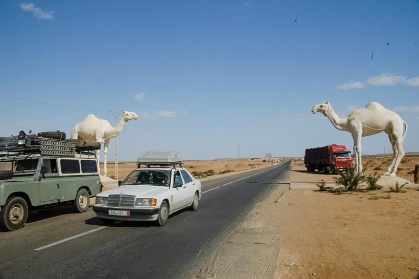 africa-overland-marokko-124