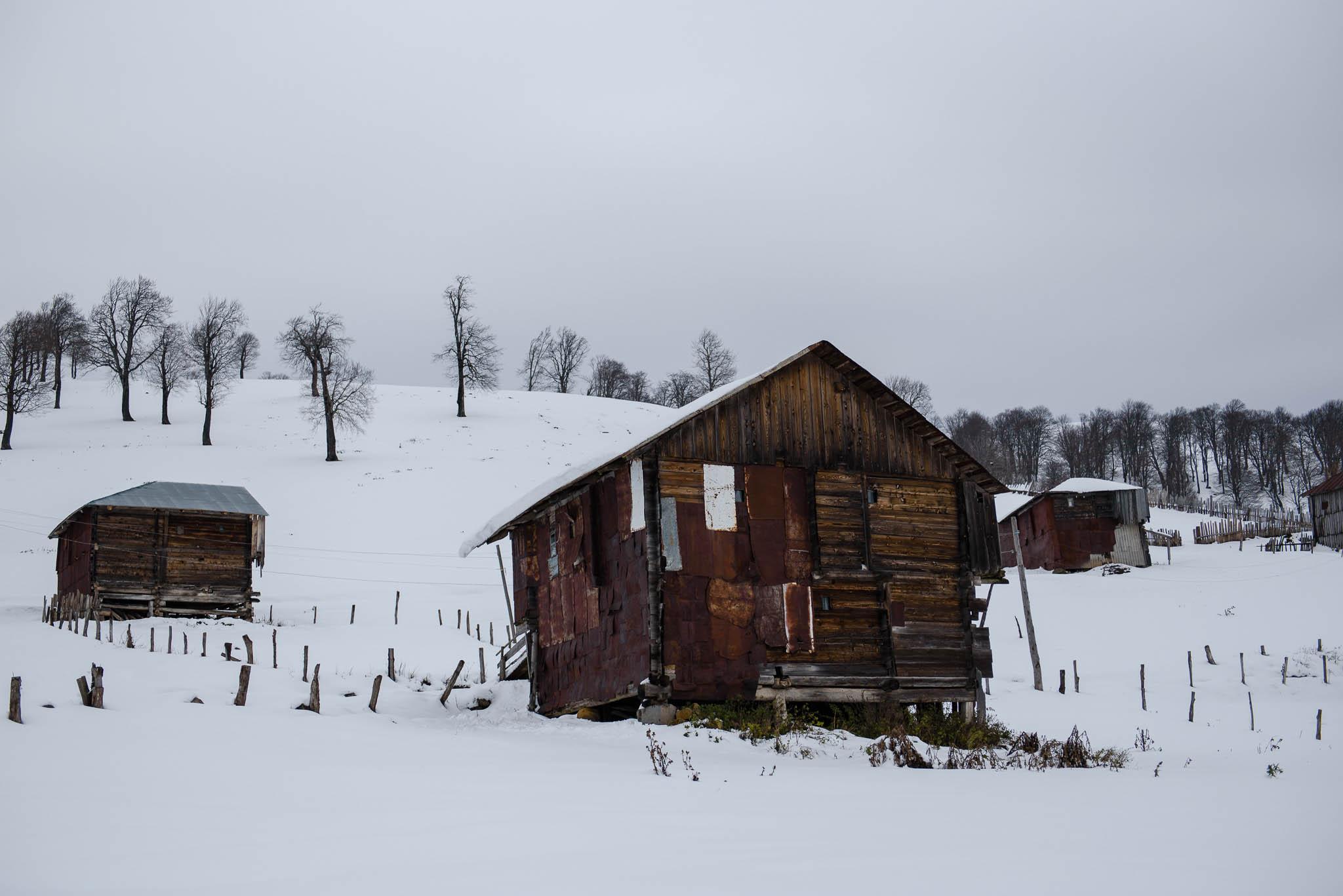 georgien-roadtrip-von-batumi-in-die-hoehlenstadt-wardsia-16