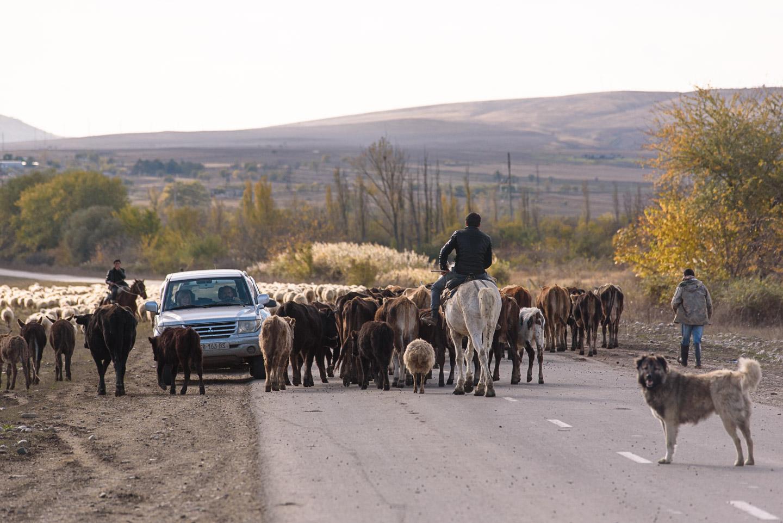Roadtrip Georgien - Sighnaghi - Vashlovani - Prometheus Höhle Kutaissi-54