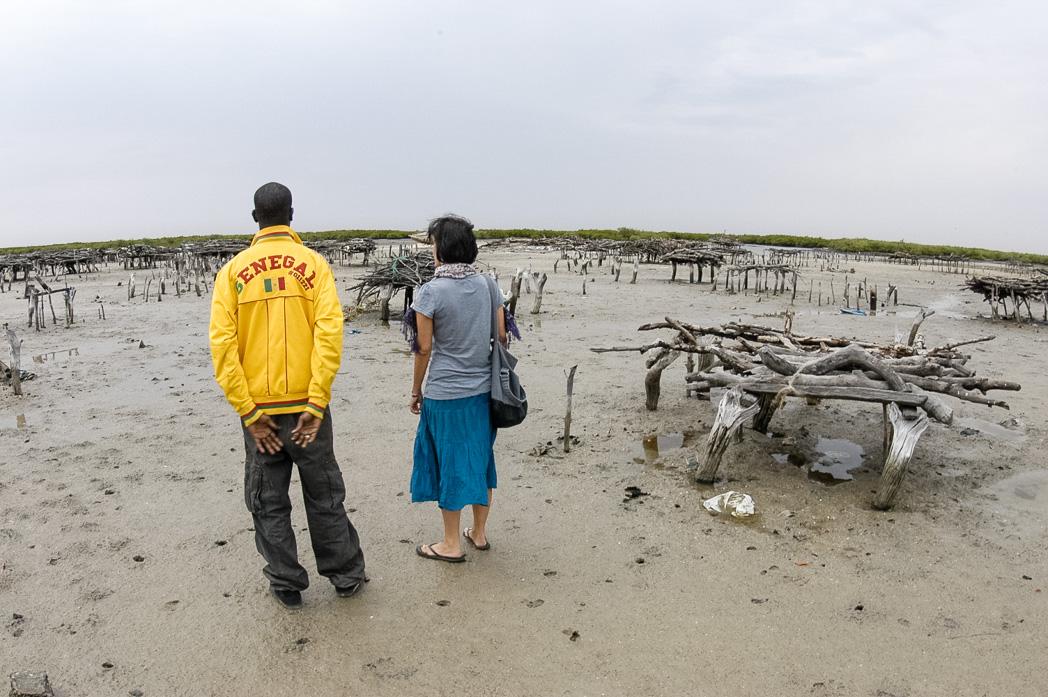 Senegambia- Eine Reise rund um Afrika-29