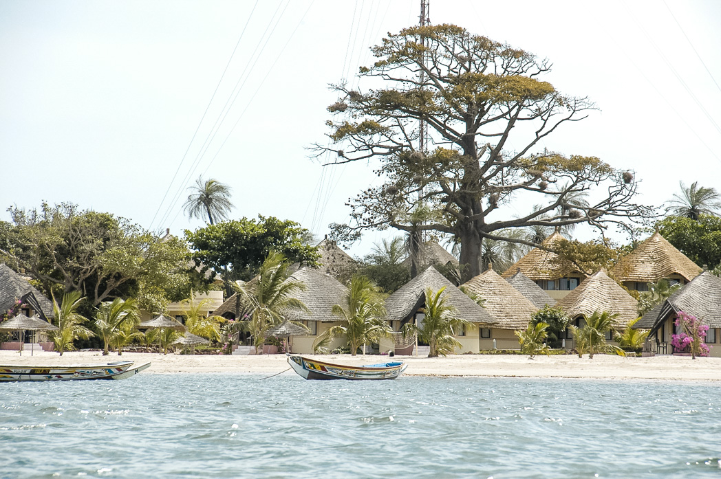 Senegambia- Eine Reise rund um Afrika-35
