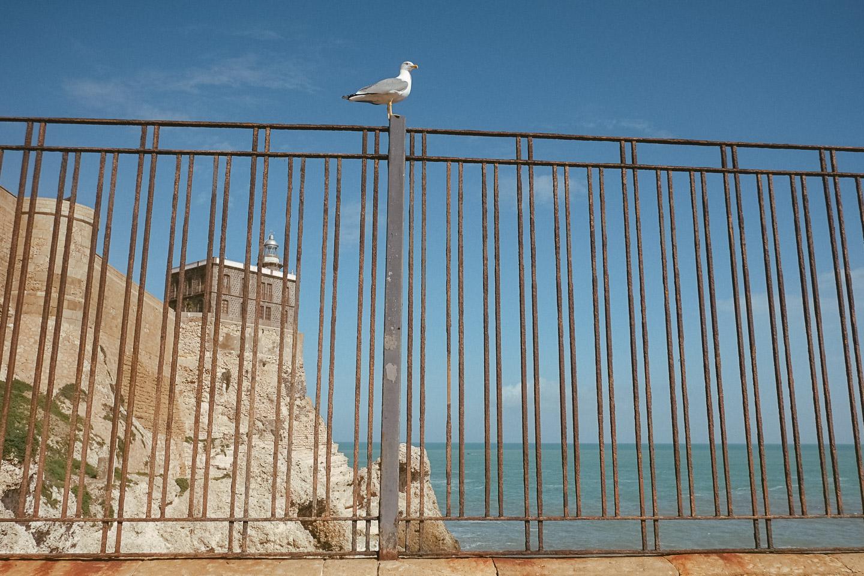 streetphotography Morocco - Melilla - Tetouan-Tanger by Daniel Kempf-Seifried-5