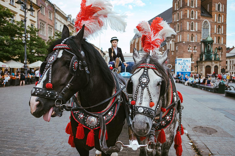 Trip to Krakau - Poland - Polen - UNESCO-208