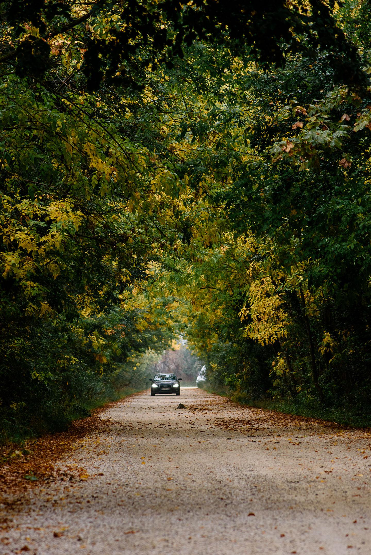 Camargue and Arles - Recontre Arles - Geschichten von unterwegs - Frankreich - Provence-7