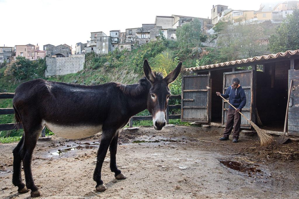 Riace - Camini - Calabria - Italien - Flüchtlinge - Integration-17