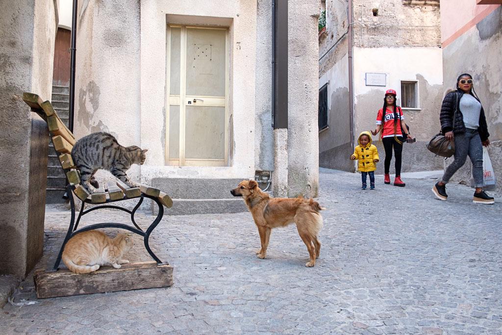 Riace - Camini - Calabria - Italien - Flüchtlinge - Integration-43