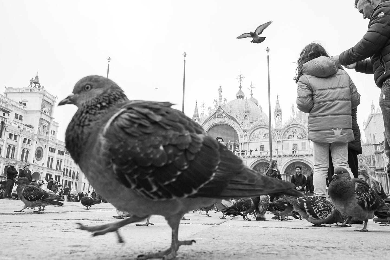Venedig-Venezia-Venice-Italien-Geschichten von unterwegs-22