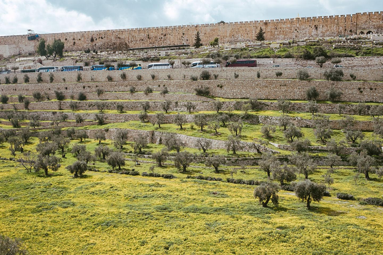 jerusalem - Israel - geschichten von unterwegs - Reiseblogger (276 von 100)