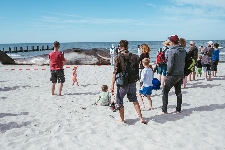 Horizonte Zingst - Fotofestival - Ostsee - Geschichten von unterwegs (10 von 102)