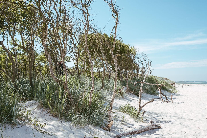 Horizonte Zingst - Fotofestival - Ostsee - Geschichten von unterwegs (43 von 102)