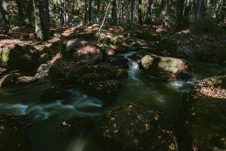 Naturschutzgebiet Hölle - Regensburg - Geschichten von unterwegs -3495