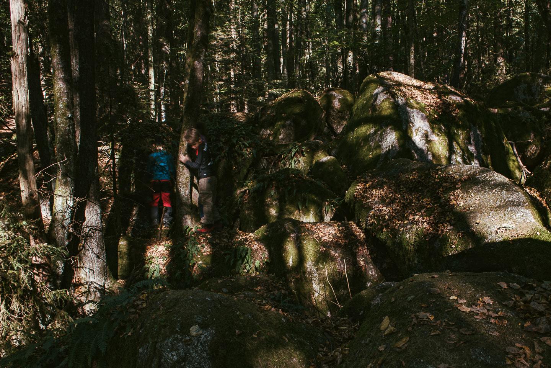 Naturschutzgebiet Hölle - Regensburg - Geschichten von unterwegs -3525