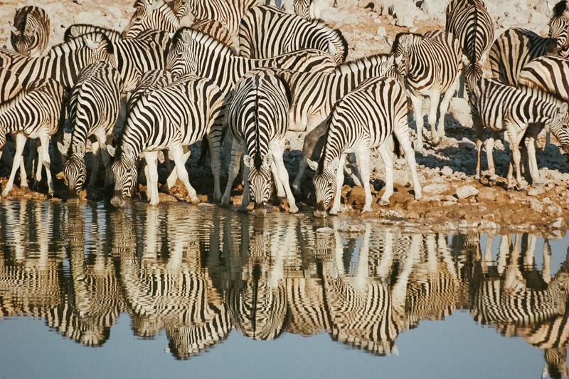 Namibia-Africa-Overland-11