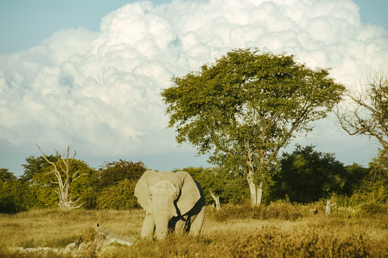 Namibia-Africa-Overland-41