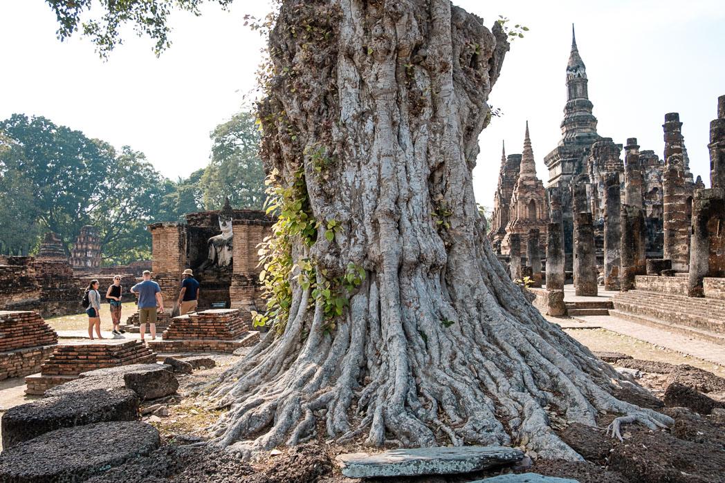 Old Sukhothai - Thailand - Geschichten von unterwegs-77