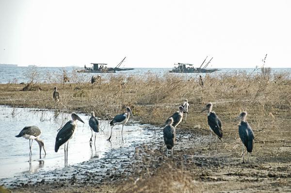 Zimbabwe - Africa Overland-31