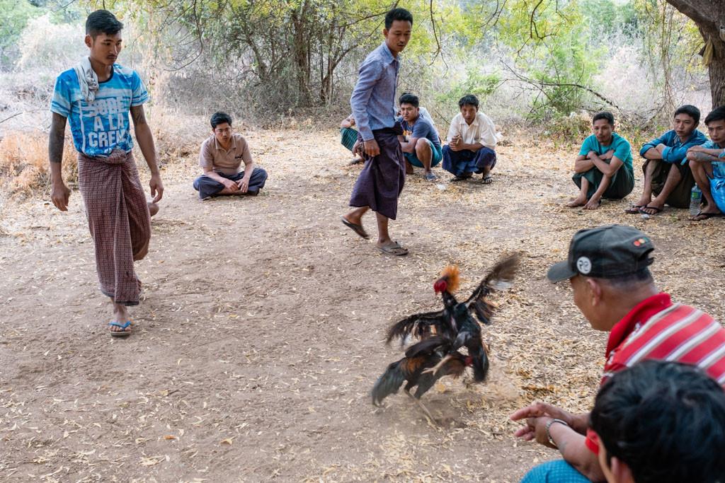 Bagan-Myanmar-Burma-25